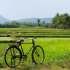 Tamil Nadu Countryside