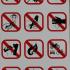 Park Rules: Strict But Fair