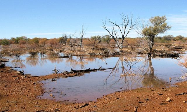 Flooded desert