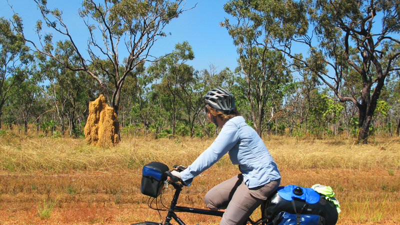 Termite Mounds Were A Common Sight