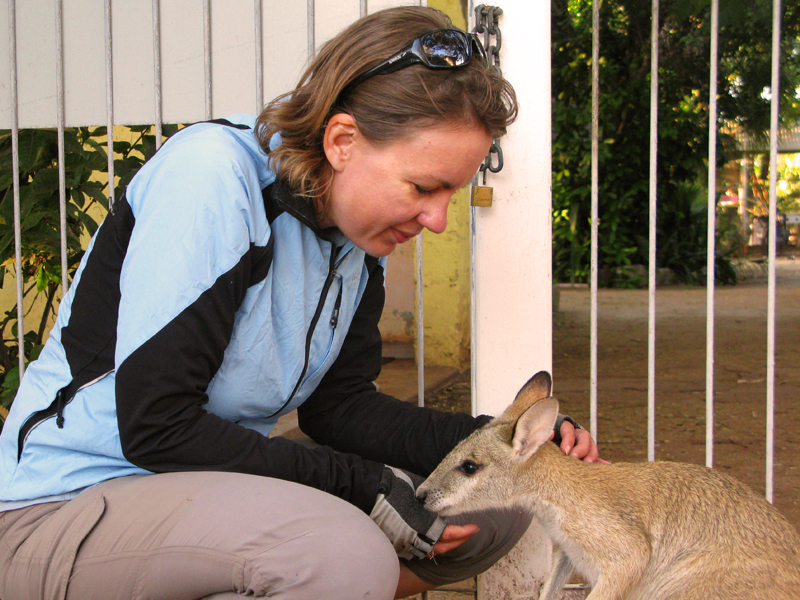 Freddie And A Friendly Wallaby