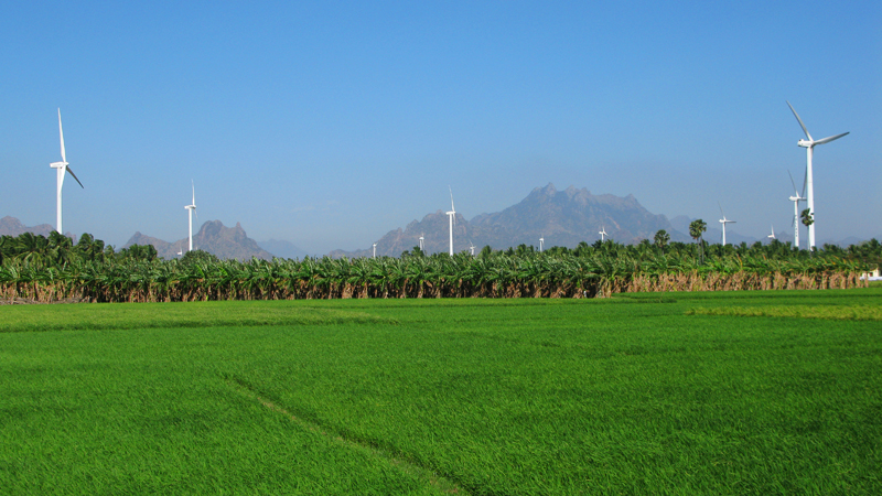 Wind Farms In India's Far South